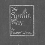 Ernest C Wilson The Sunlit Way