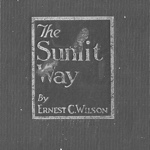 Ernest C Wilson The Sunlit Way
