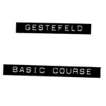 Gestefeld Course Notes